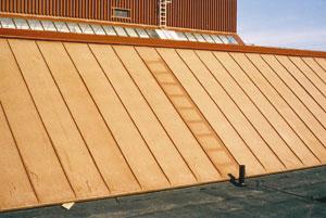 Bild 1:5. Kulörförändringar på färger och beläggningar beror till stor del på UV-strålning. På detta tak har det legat en stege som skymt solen. Foto: Torbjörn Osterling.