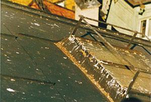 Bild 1:8. Fågelträck påskyndar nedbrytning av färg och beläggning på plåten. Stora mängder kan också leda till att metallen korroderar. Dessutom kan ansamlingen av fåglar vara sådan att det även är ett hygieniskt problem. Foto: Torbjörn Osterling.