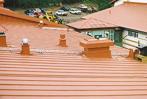 Bild 2:3. Förzinkad stålplåt som tidigare byggplatsmålades men numera färgbeläggs industriellt är ett vanligt takmaterial. Foto: Torbjörn Osterling.