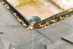 Bild 12:1. För en riktig underhållsplanering<br /> av tak krävs årliga kontroller. Foto: Torbjörn Osterling.