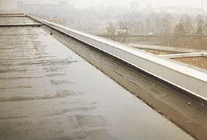 Bild 4:9. Kvarstående vatten. Foto:Torbjörn Osterling.