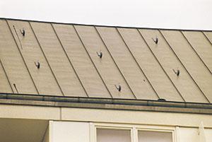 Bild 11:10. Säkerhetshakar på ett tak i Tyskland.