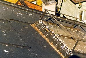 Bild 12:25. Fågelträck kan ge lokala korrosionsangrepp. Foto: Torbjörn Osterling.