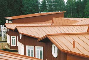 Bild 12:59. Ett vackert tak förtjänar att underhållas. Foto: Torbjörn Osterling.